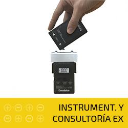 INSTRUMENT. Y CONSULTARIA EX